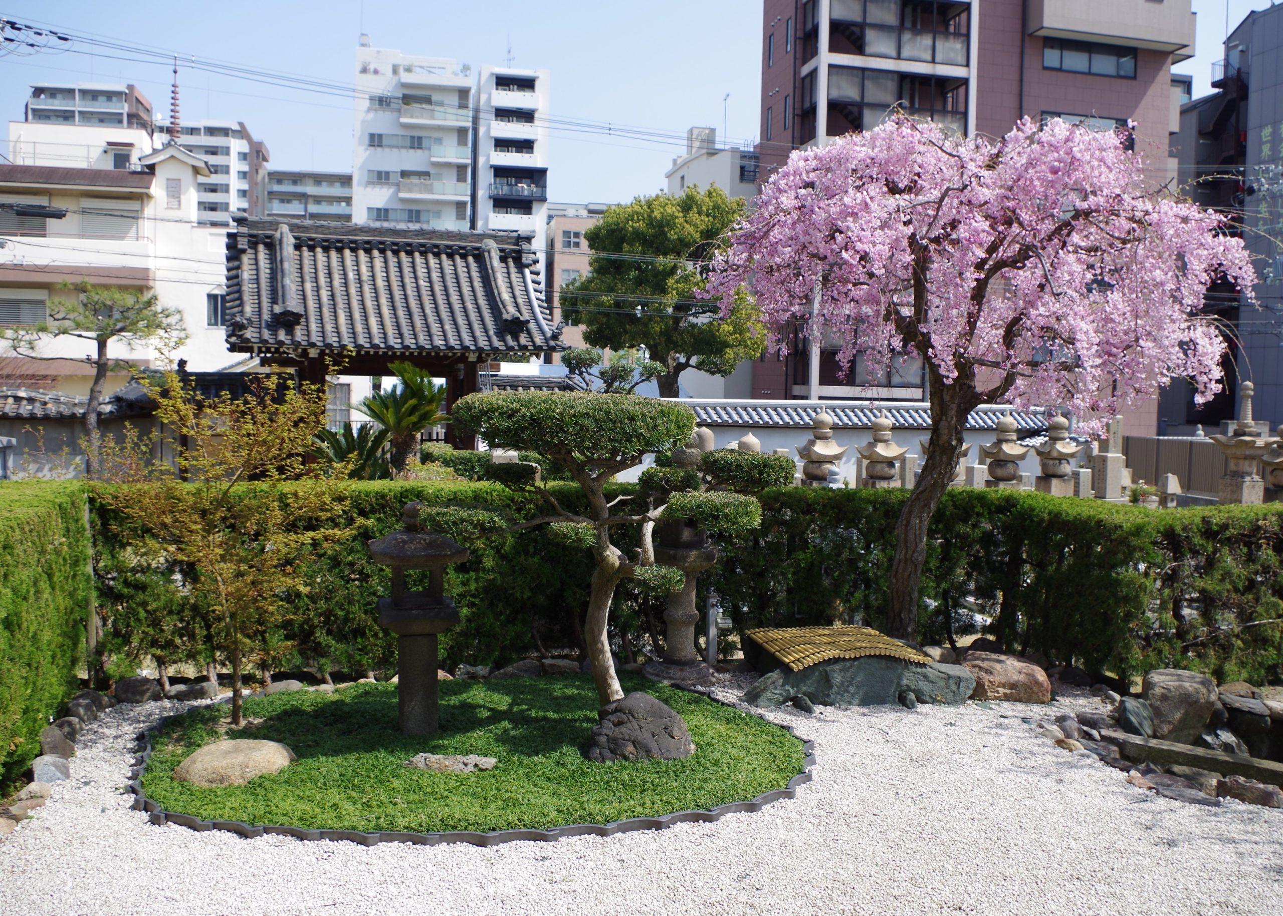 大乗寺 中庭1